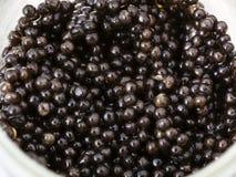 Many black sturgeon caviar in glass jar Royalty Free Stock Image