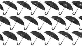 Many Black Umbrellas Royalty Free Stock Image