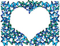 Many blue butterflies make frame of heart. On white Royalty Free Stock Photography