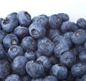 Many blueberries Royalty Free Stock Image