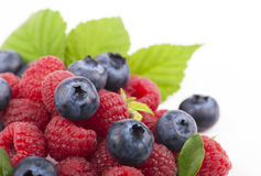 Many blueberries & raspberries. Stock Photos