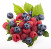 Many blueberries & raspberries. Royalty Free Stock Photos
