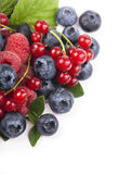 Many blueberries, raspberries. Isolated white Royalty Free Stock Image