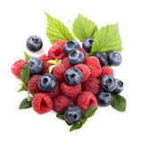 Many blueberries, raspberries. Isolated white Stock Photos