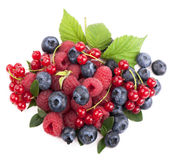 Many blueberries, raspberries. Isolated white Royalty Free Stock Photos