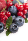 Many blueberries, raspberries. Isolated white Stock Images