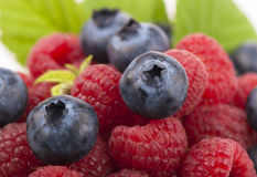 Many blueberries & raspberries. Royalty Free Stock Photography