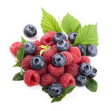 Many blueberries, raspberries.  white Stock Images