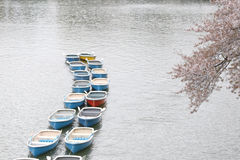 Many Boat In The River. Royalty Free Stock Images