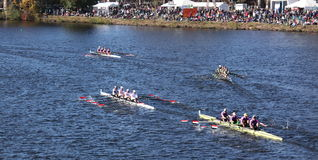 Many boats race in the Directors Challenge Quad Me Stock Photography