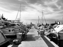 Many boats and yachts berthed in Sanremo harbor stock photography