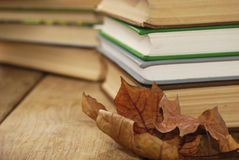 Many books on the table Royalty Free Stock Images