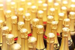Many bottles of champagne with golden foil top in rows. Party celebration background. Wedding and christmas beverage.  stock images
