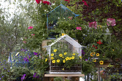 Many Bright Bird Cage Garden Ornaments Stock Photos