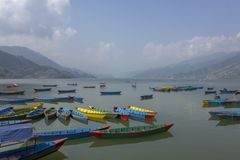 Many bright multicolored empty wooden boats on the Phewa lake on the background of a green mountain valley in the haze royalty free stock photos