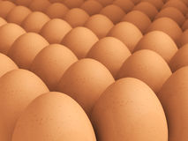 Many brown eggs Royalty Free Stock Images