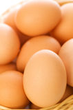 Many brown eggs. In the basket - shallow DOF Stock Image