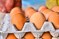 Many brown eggs in boxes. Stock Photos