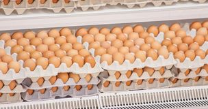 Many brown eggs in boxes in store.  Royalty Free Stock Photography