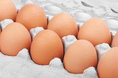 Many brown eggs in carton tray. Closeup of many fresh brown eggs in carton tray Stock Photos