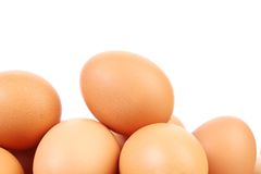 Many brown eggs Stock Image