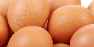 Many brown eggs Stock Photo