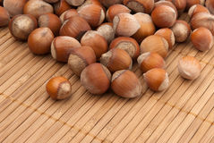 Many brown hazelnuts Stock Photo