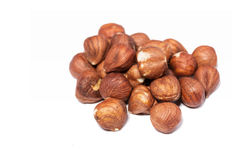 Many brown hazelnuts. On white background Royalty Free Stock Image