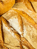 Many brown rustic fresh rye bread loaves as food background Royalty Free Stock Photos