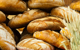 Many brown rustic fresh rye bread loaves Royalty Free Stock Photo