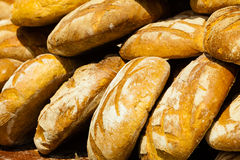 Many brown rustic fresh rye bread loaves Royalty Free Stock Image