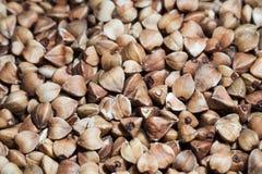 Many buckwheat macro Royalty Free Stock Image