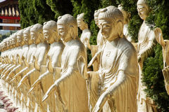 Many buddha standing in the sun Royalty Free Stock Photo