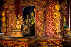 Many Buddha statue in church at  Phra Singh Temple Royalty Free Stock Photography