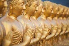 Many Buddha statue Stock Photos