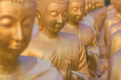 Many Buddha statue selective focus Royalty Free Stock Photo