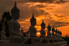 Many buddha statues sitting in row on sunset Stock Images