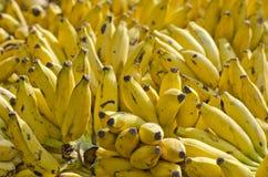 Many bunch ripe bananas in asia market Stock Photography