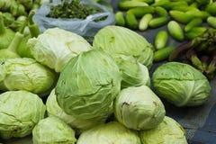Many Cabbage Royalty Free Stock Photo