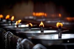 Many candles burning Stock Image