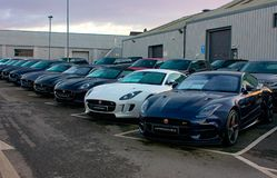 Many cars near the street royalty free stock photo