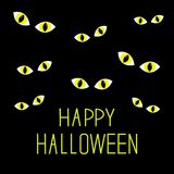 Many cat eyes in dark night. Happy Halloween card. Flat design. Stock Images