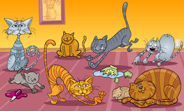 Many cats at home Stock Image