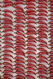 Many ceramic magnets peppers Stock Photo