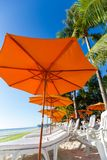 Many Chairs And Umbrella On Beach Stock Image