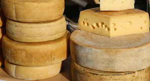 Many cheeses and aged cheeses on sale in the food market. Many cheeses and aged cheeses on sale in the market Royalty Free Stock Photo