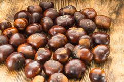 Many chestnut fruits are located on a wooden table view from the side center.  stock images