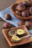 Many chestnut Stock Images
