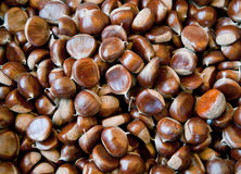 Many Chestnuts Stock Photos