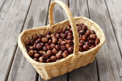 Many chestnuts in a basket Stock Images